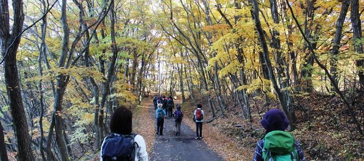 安藤百福記念 自然体験活動指導者養成センター